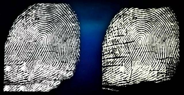 Zuverlässigkeit von Fingerabdruck als Beweismittel im Strafverfahren