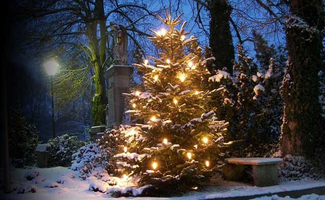 Weihnachtsamnestie, Gnadenerweis, Weihnachtsfest, JVA, Strafvollzug, Gefangene, Haftanstalt, Freilassung, Weihnachten