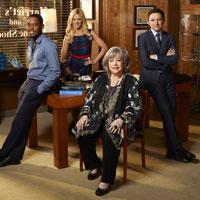 Harry's Law, Anwaltsserien, Harriet, Korn, Harry, Law, Anwälte, Serie, TV, Kabel, Strafrecht